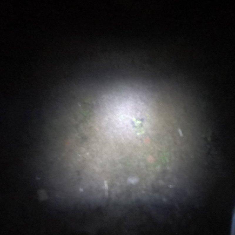 Illuminazione frontale Trail Runner free