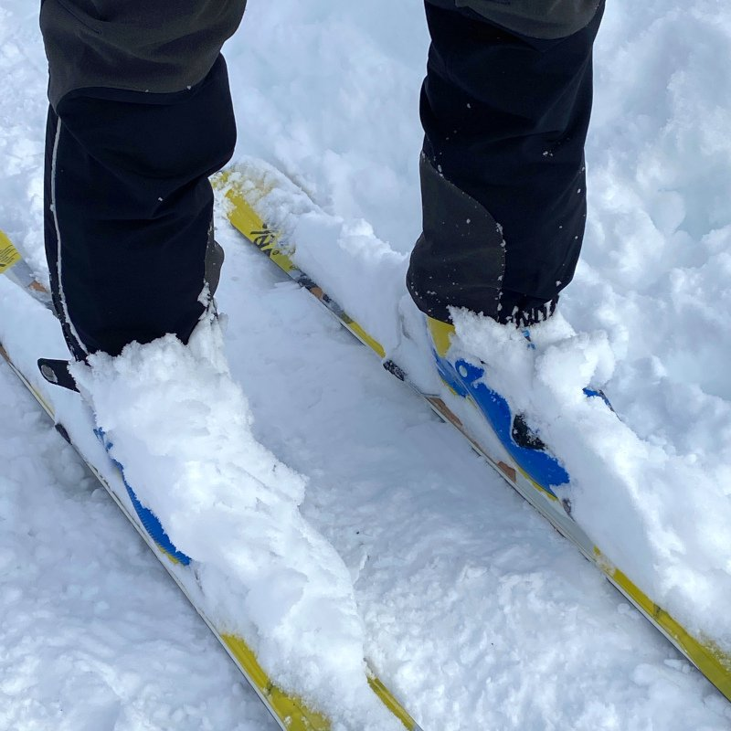 Il test in neve fresca