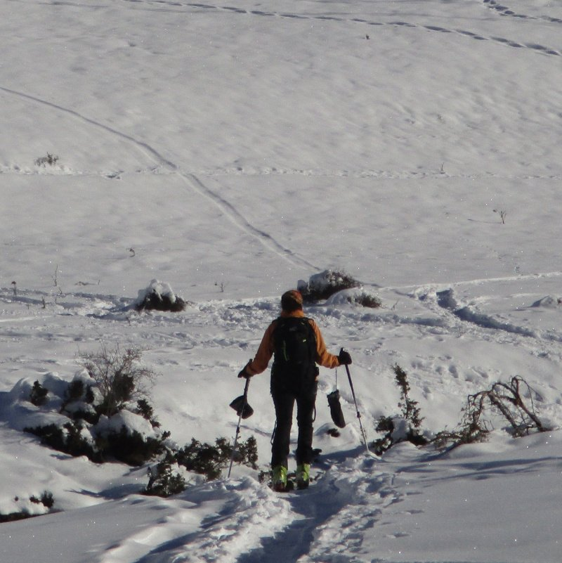 guanti meteor mitt sulla neve